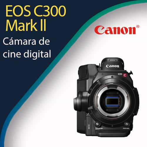 EOS C300