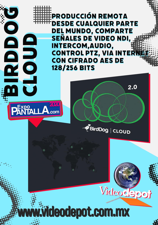 birddog-cloud
