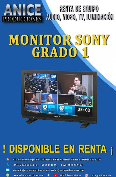 23 FLAYER MONITOR GRADO1